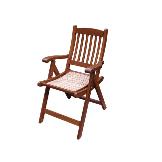Ranthambore Chair